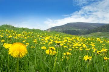 Fantastic Springtime