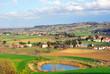 Vineyards near Imola Italy