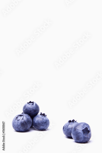 Blueberries 5