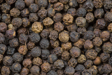 Peppercorn Macro