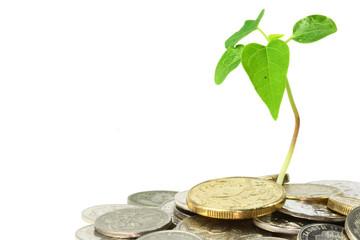 В России могут ввести «экологическую плату»