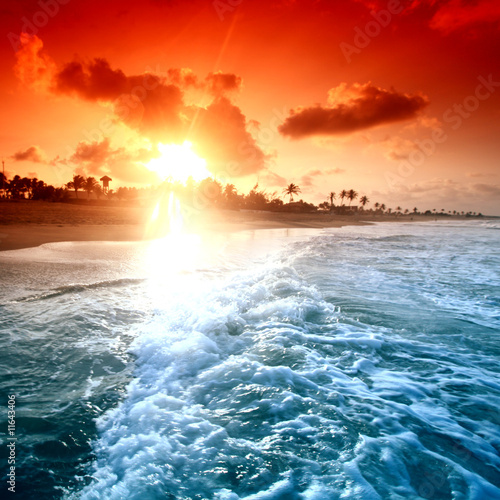 sunrice-oceanu