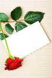 Rose with stationery poster