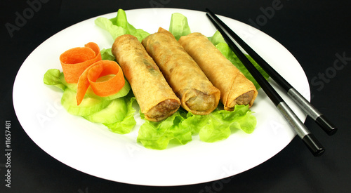 Single serving of spring rolls