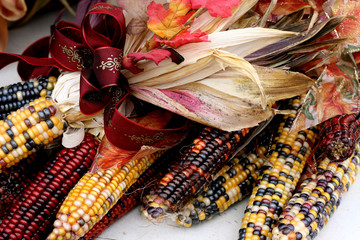 Indian Corn With Ribbon