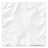 Wrinkled Paper Background 1 poster