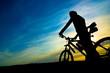 silhouette of biker