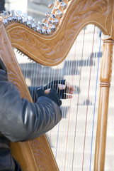 Harpist playing on the street