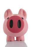 Pink Piggy Bank (moneybox)