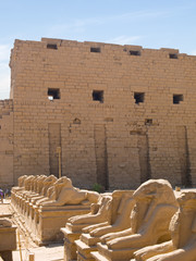 Ram-headed sphinxes and pylon at Karnak Temple. Thebes