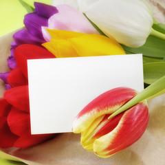 Visitenkarte mit Tulpen