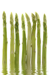 Reflection for green asparagus