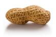Peanut 5
