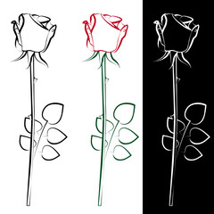 A collection of three silhouettes of roses