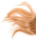 Blonde fair hair on white background poster