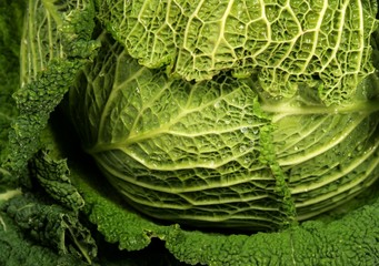 dietary   cabbage