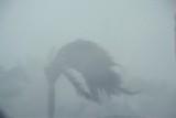 Dangerous 100 MPH+ Storm Winds and Rain