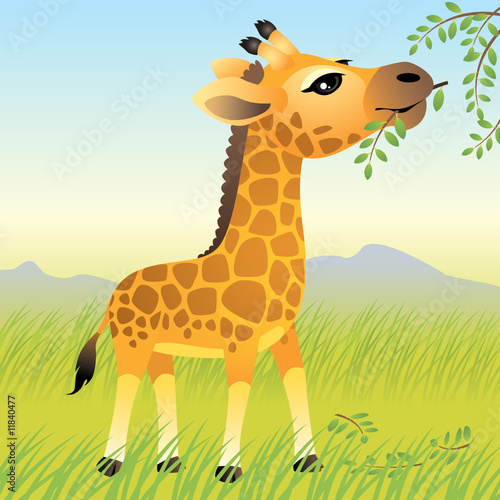 Fotobehang Zoo Baby Animal collection: Giraffe. More animals in my gallery.