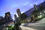 Los Angeles city scenic poster