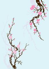sakura branch with flowers