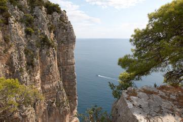 Italy. The mountain Orlando. Tyrrhenian Sea. Mediterranean pine