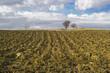 paesaggio di campagna con campo arato