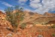 Desert landscape, Brandberg mountain, Namibia, Africa