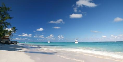 Tropical Paradise - White Sands Beach, Caribbean Ocean and Cocon