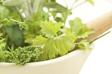 Herbs with Pestle and Mortar Closeup Lframe