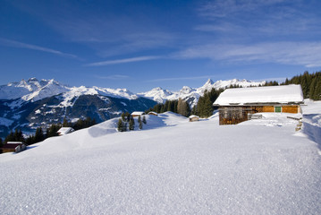 Montafoner Bergwelt