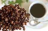 Fototapety コーヒー豆とコーヒー