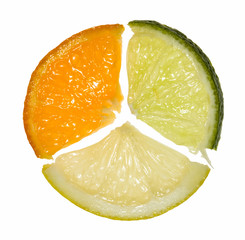 Composition of orange, lemon and lime segments
