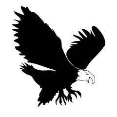 Eagle Silohette - Isolated On white