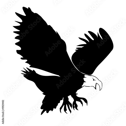 Eagle Silohette - Isolated On white