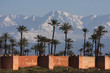 neige, palmiers et ramparts.