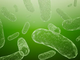 Bacteriums poster