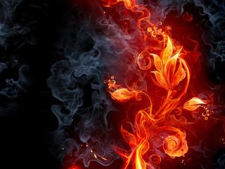 Płomienie i ogień fototapeta do salonu