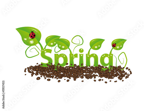 Spring word illustration