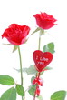 Rose, love