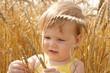 Kid examining wheat spikes