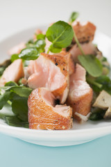 salad leaves with fried salmon and mushrooms (detail)