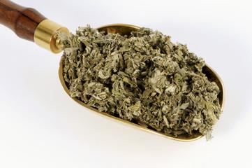 dried artemisia argyi leaves in a scoop