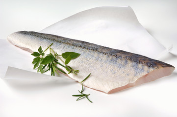 a fresh zander fillet on greaseproof paper