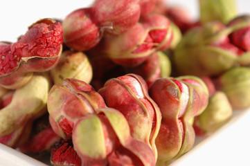 manila tamarind (pithecellobium dulce)