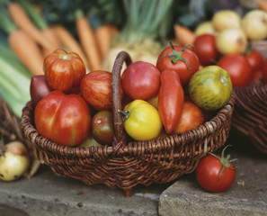 various types of tomatoes in basket