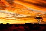 Fototapety african sunset