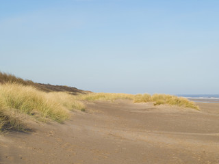 A sandy beach with grassy dunes and sea