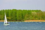 Sailboat sailing on the lake poster