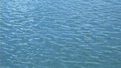 Flots bleautés de la Seine