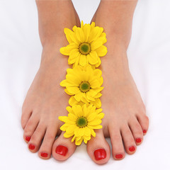 Feet with red padicure and yellow daisies